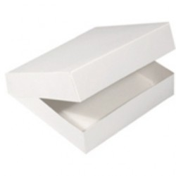 Boxes for catering tray x5