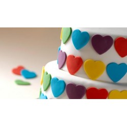 Renshaw Sugarpaste multipack 5 primary colours